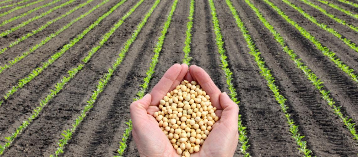 Wygrana w sporze o odszkodowanie z ubezpieczenia upraw rolnych
